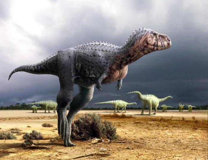 dinosauri carnivori - esterno